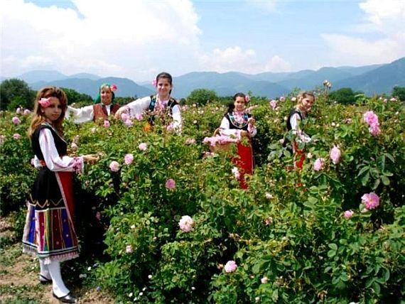 bolgariya-dolina-roz (570x428, 308Kb)