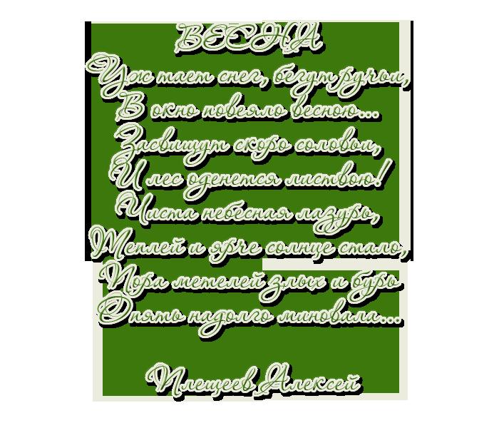 3166706_plesheev_1 (700x600, 225Kb)