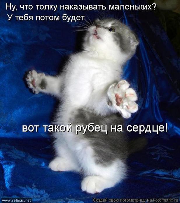 kotomatrix_0732 (617x700, 382Kb)