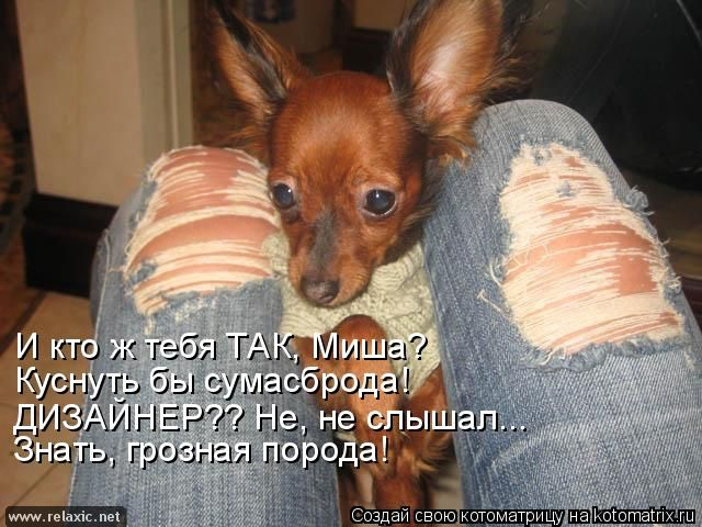 kotomatrix_0802 (640x480, 261Kb)