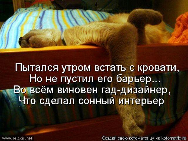 kotomatrix_0902 (640x480, 301Kb)