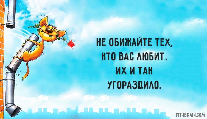 0_180cc4_698e9569_orig (695x400, 297Kb)