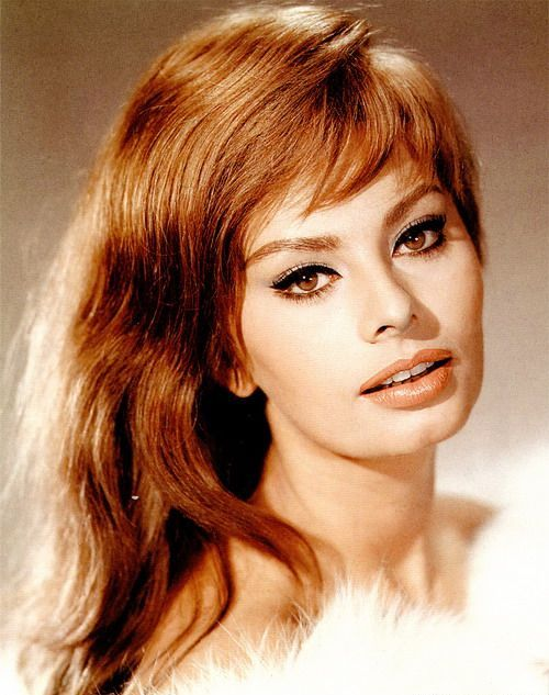 Sophia Loren photo (1) (500x633, 60Kb)