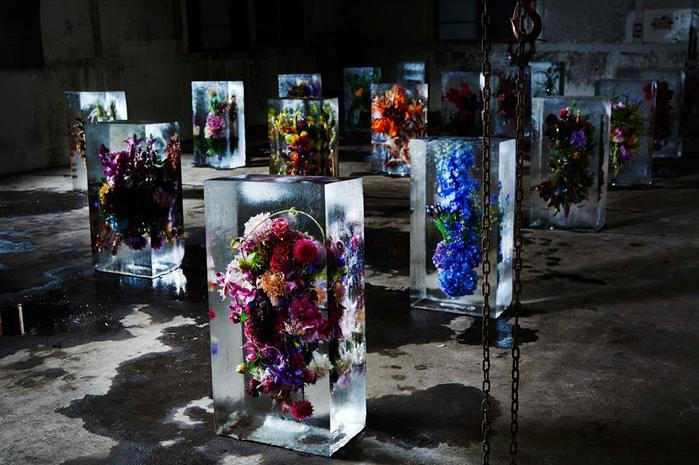 iced-flowers-makoto-azuma-21 (700x465, 62Kb)