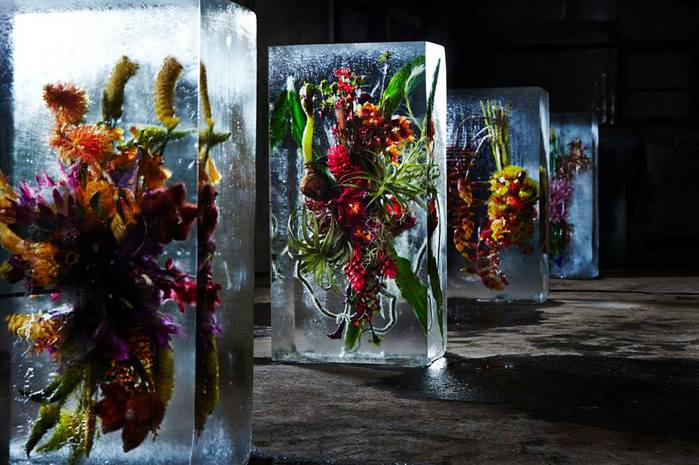 iced-flowers-makoto-azuma-31 (700x465, 60Kb)