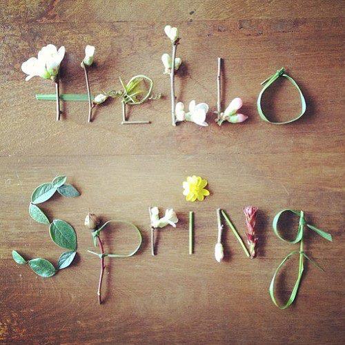 4278666_spring83 (500x500, 469Kb)