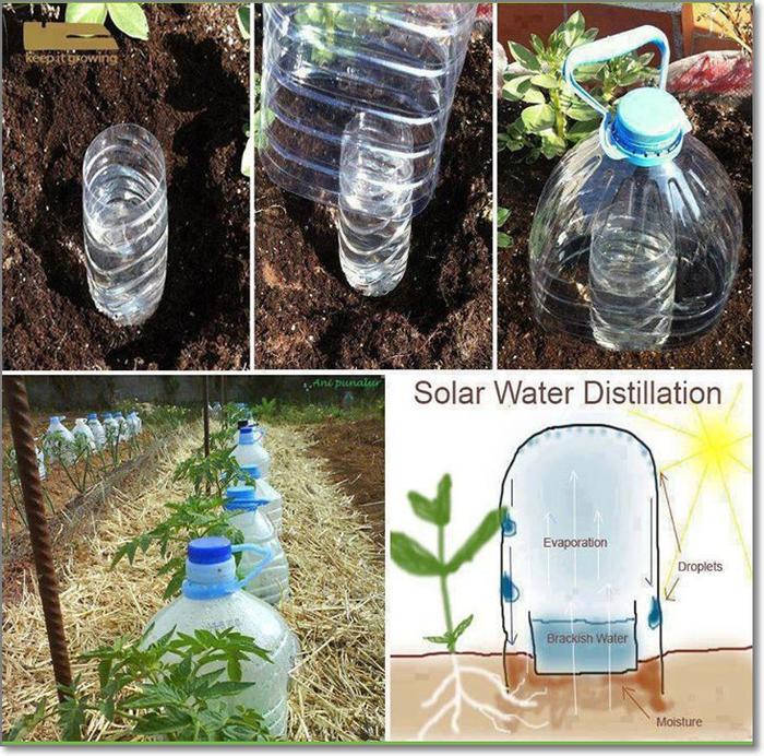 Как сделать самополив из бутылки