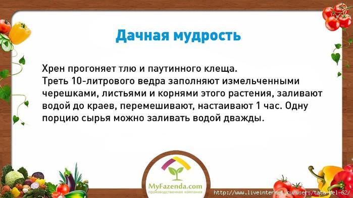 3863677_dachnaya_mydrost (700x392, 142Kb)