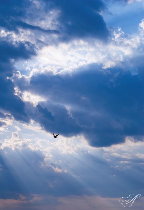 небо (482x700, 197Kb)