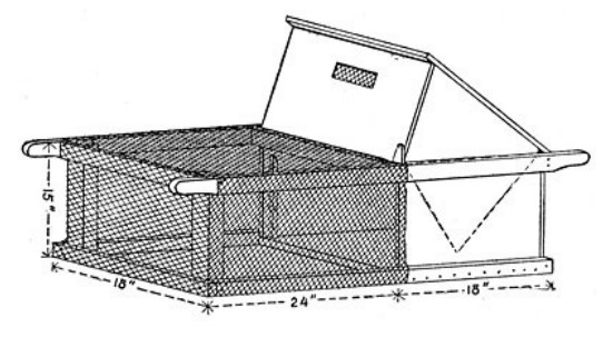 проект и чертеж курятника