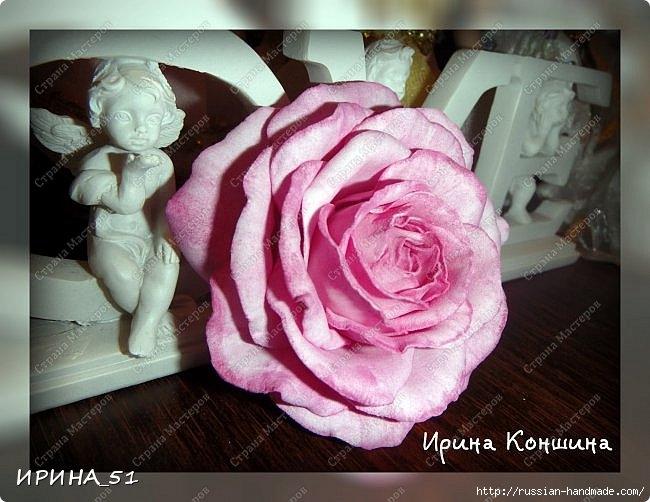Очень красивые розы из фоамирана. Мастер-класс (3) (650x502, 186Kb)