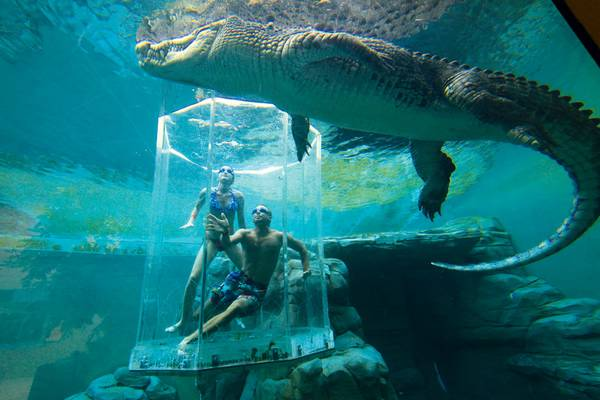 Бухта-Крокозавров-Австралия (600x400, 35Kb)