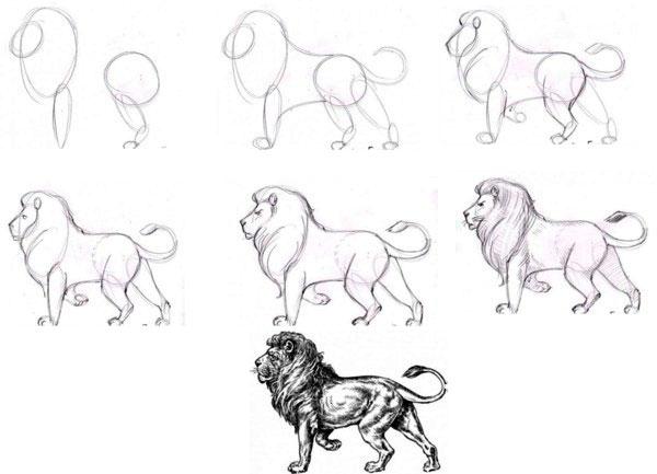 Схема рисования львов
