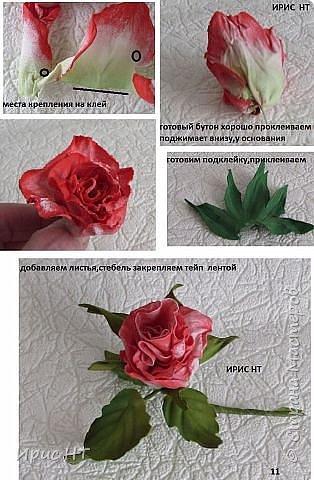 роза из фоамирана_мк (12) (314x480, 141Kb)