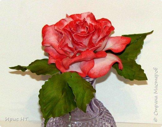 роза из фоамирана_мк (16) (520x409, 159Kb)