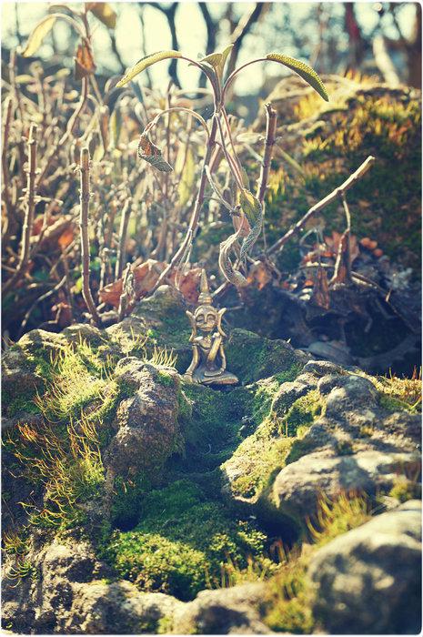 buddha garden 1 (465x700, 151Kb)