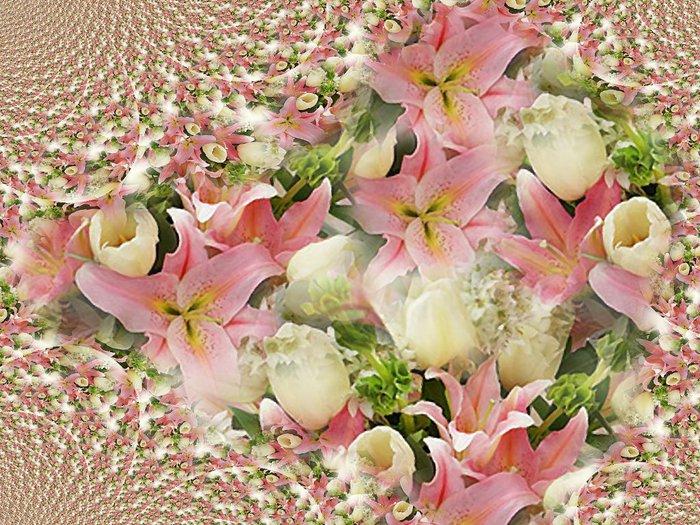 lilii (700x525, 135Kb)