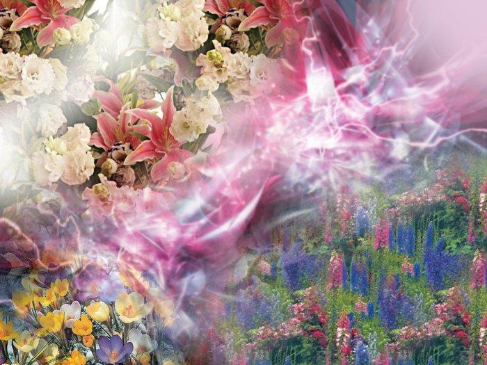 spring_dream (700x525, 94Kb)