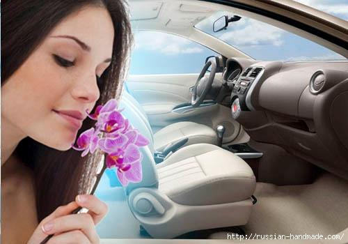 Избавляемся от неприятного запаха в салоне автомобиля (3) (500x350, 102Kb)