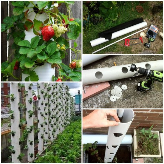 FabArtDIY-PVC-Gardening-Ideas-and-Projects-PVC-Strawberry-Tube-Planter (550x550, 349Kb)