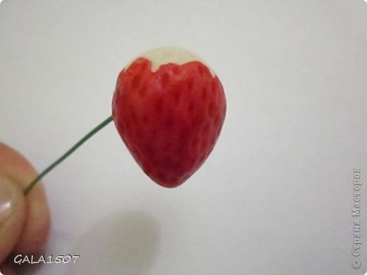 GALA1507-соленые ягодки-мк16 (520x390, 80Kb)