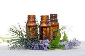 4721164_aromatherapy (275x183, 7Kb)