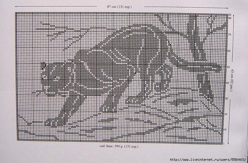 Львы тигры пантеры барсы