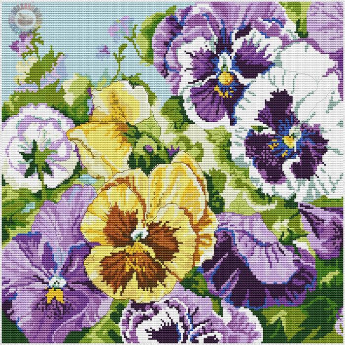 Glorious Pansies (700x700, 904Kb)