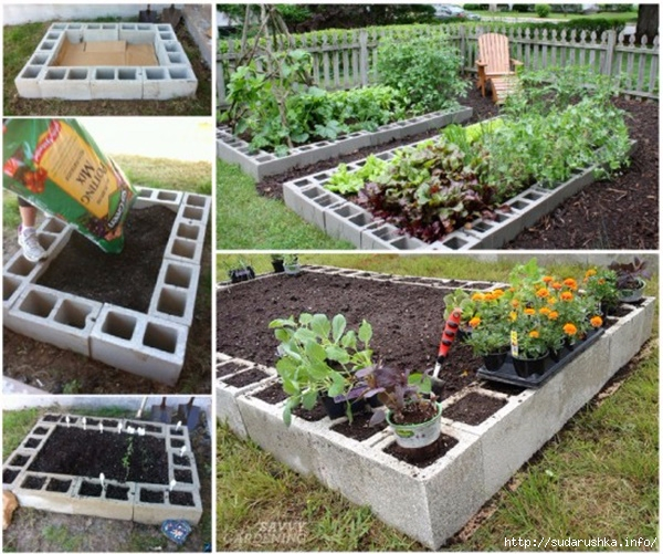 1DIY-Cinder-Block-Raised-Garden-Bed (600x501, 284Kb)