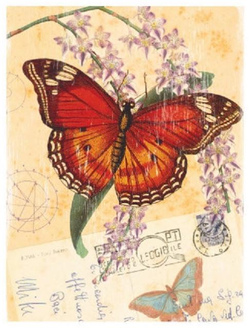 5 vintage lГЎmina mariposas (487x640, 263Kb)