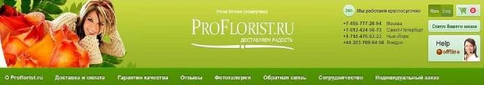 1207817_121038365_1207817_floristika (700x123, 32Kb)