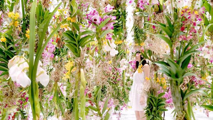 цветочная инсталляция 2 (700x394, 478Kb)