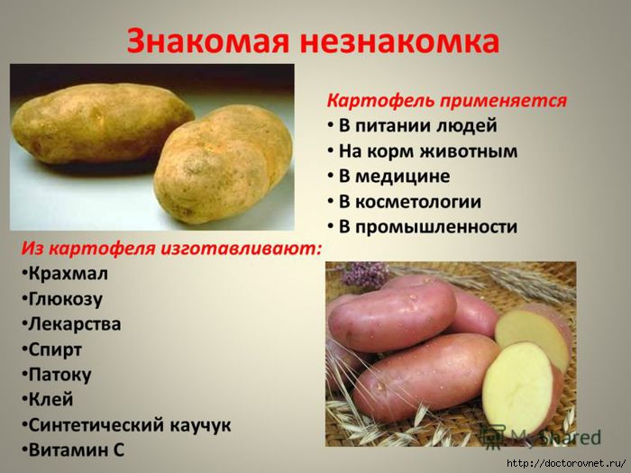 1427550894_kartofel__lechebnuyy (700x525, 154Kb)