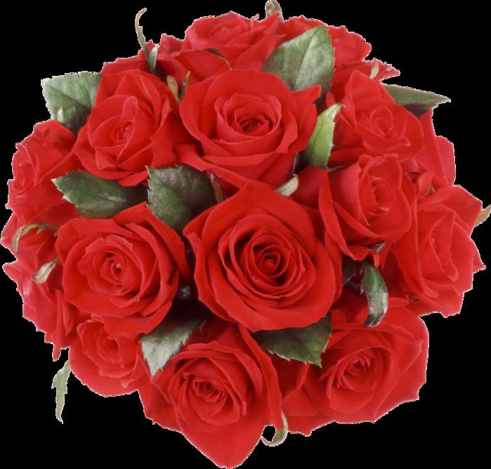 roza2 (27) (700x668, 548Kb)