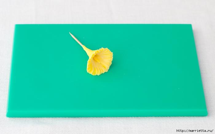 Сладкие НАРЦИССЫ из сахарной мастики (8) (700x438, 118Kb)