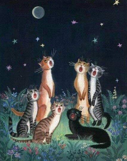 cats' night song..... buonanotte da tutti i mici del mondo! dans gatti 121551087_FAIRY_TALES