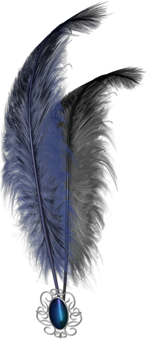 feathers (2) (304x700, 271Kb)