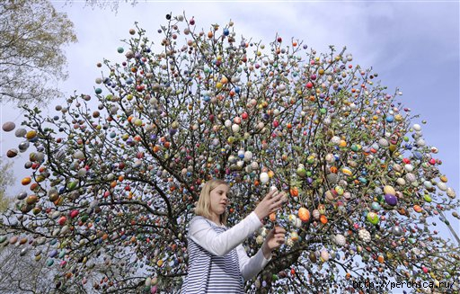 4979645_110420_Germany_Easter_Egg_Tree_3 (512x327, 188Kb)