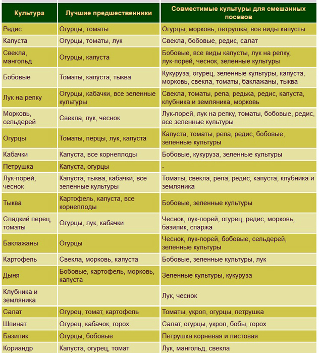 Выбираем соседей на овощной грядке - Ботаничка ru