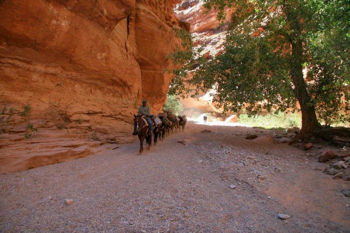 индейское село в великом каньоне 3 (700x466, 345Kb)