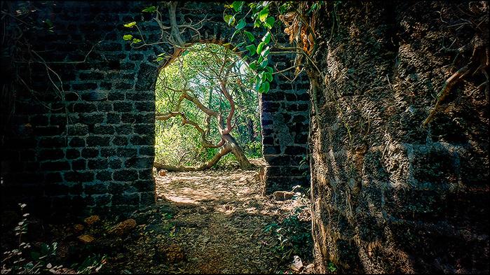 Реди форт. Штат Махараштра, Индия/3673959_8 (700x393, 276Kb)
