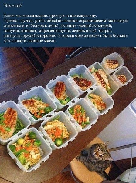 Простые правила питания2 (448x604, 274Kb)