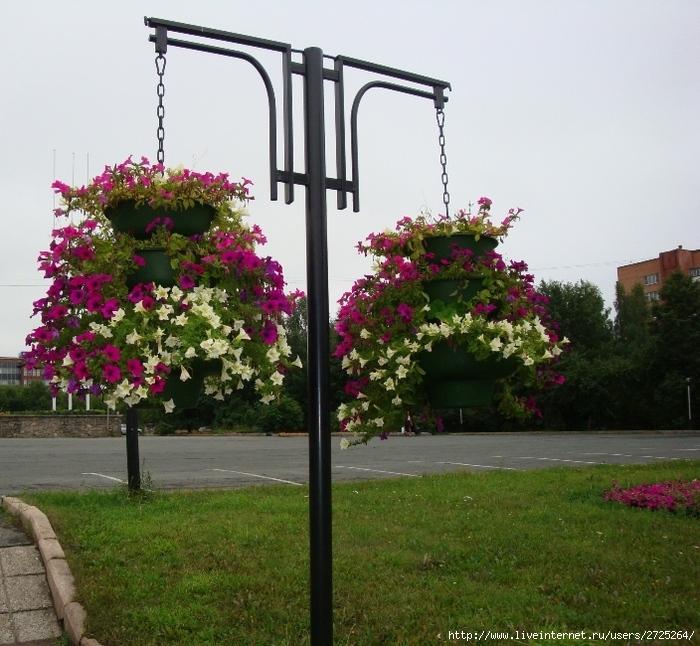цветы висят в вазах (700x646, 225Kb)
