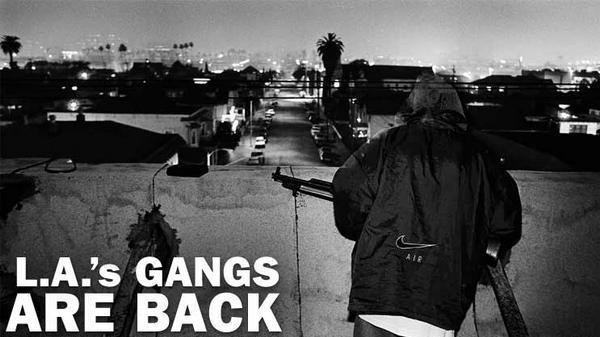 street gangs of los angeles essay