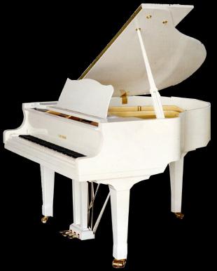 Накормили нотами клавиши