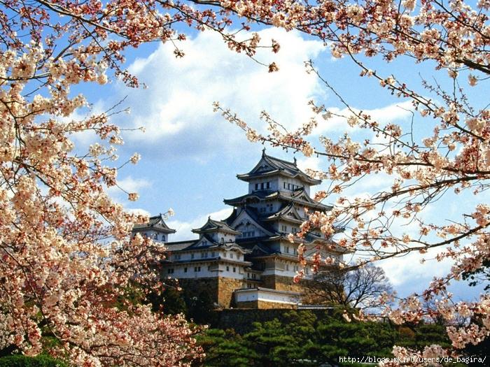 замка Кинки Химеджи (kinki himeji castle) (700x525, 257Kb)