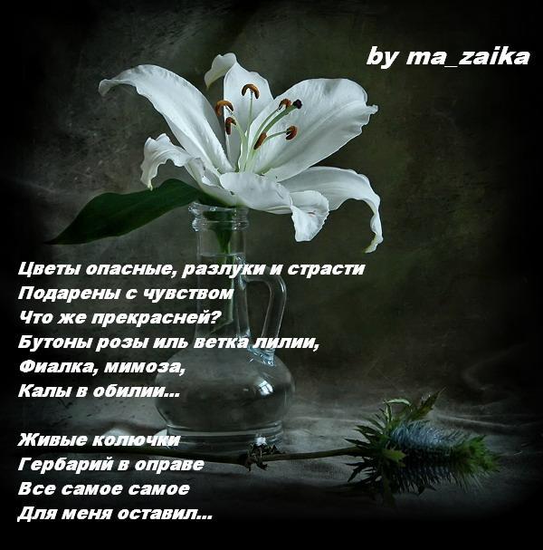 by ma_zaika