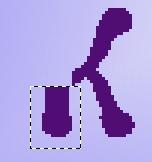 (152x162, 5Kb)