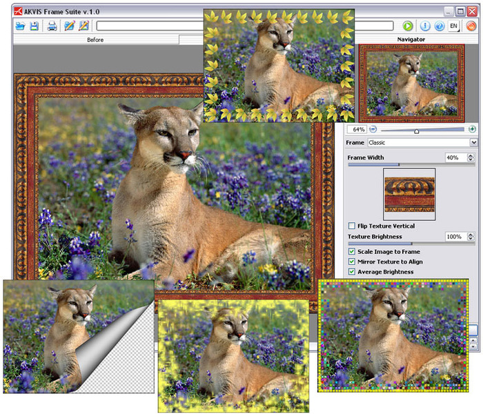 Screenshot of AKVIS Frame Suite.
