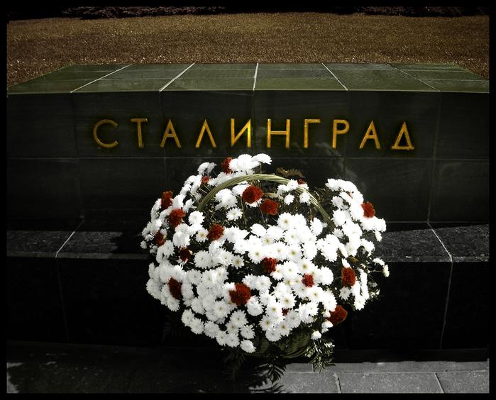 http://img1.liveinternet.ru/images/attach/c/0/34/971/34971934_Stalingrad.jpg